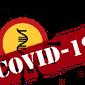 COVID-19 Coronavirus Statistics